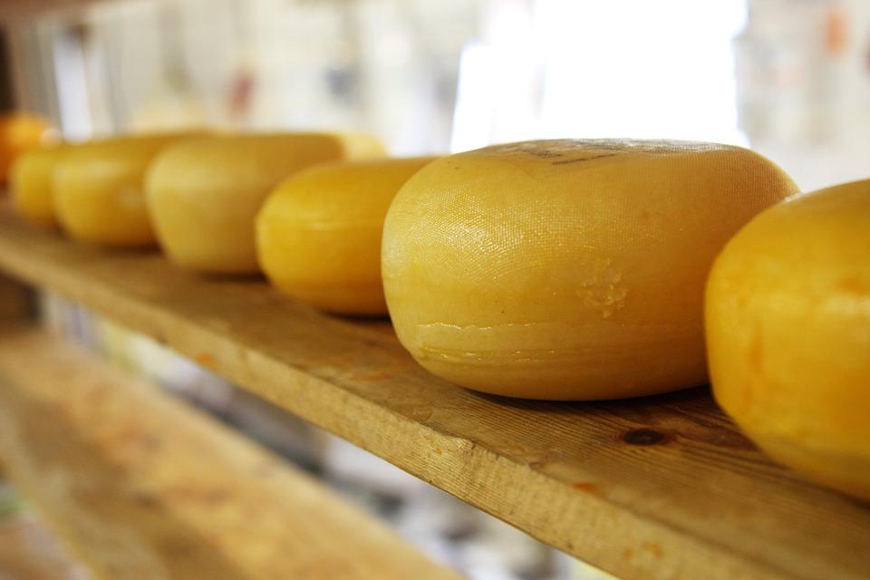 пашки сир - острво паг